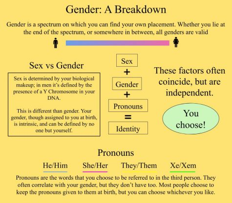 The Basics Gender By Elijah Bullie